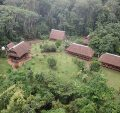 tambopata lodge inn tours peru travel
