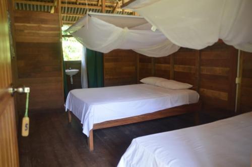tours tambopata lodge inn peru amazon travel