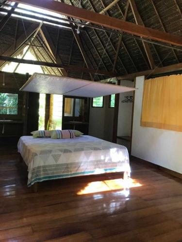 tours tambopata lodge inn peru amazon travel